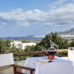 Kedros_Villas_Suites_Naxos_island_Greece_0101