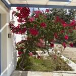 One-bedroom-villa-kedros-villas-13